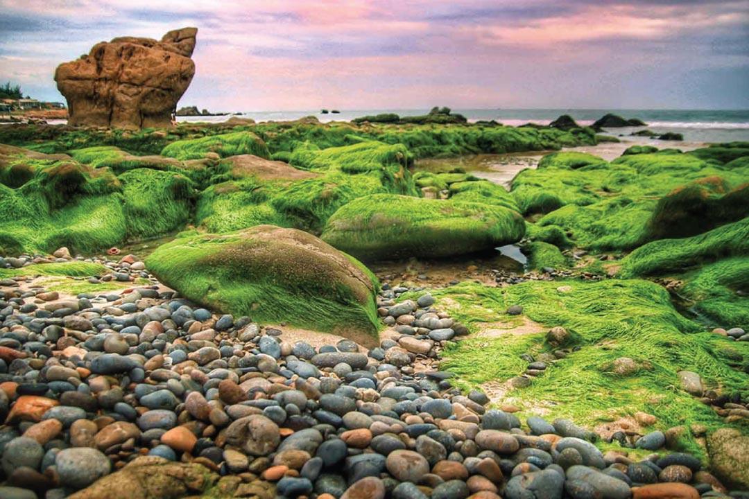 Biển Cổ Thạch ở huyện Tuy Phong